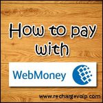 How to pay with WebMoney payment ?